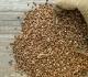 Pohanka – bezlepková plodina s vysokou výživovou hodnotou