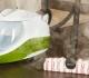 Parním čističem proti pylům, plísním a potravinovým alergenům