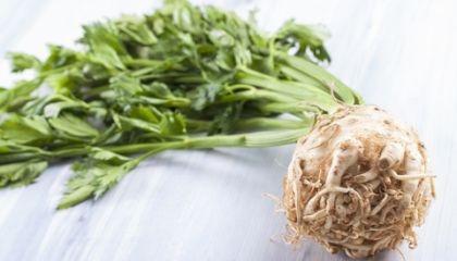 Alergenicita celeru se jeho tepelným zpracování bohužel významně nesnižuje (foto: Mamamiapl Dreamstime.com)