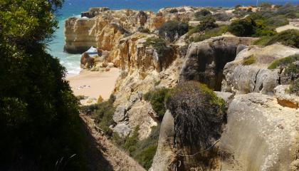 Nejen ve venkovních prostorách se setkáme s pyly trav, bylin a stromů, ale bohužel nás obvykle trápí i doma, v práci či ve škole. (foto: Dreamstime.com)