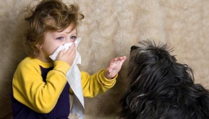 Alergie na zvířata ztěžuje dýchání, ale může se projevit i na pokožce