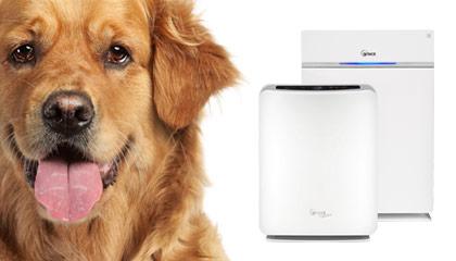 Při alergii na zvířata, která s vámi sdílejí domácnost, používejte čističku vzduchu