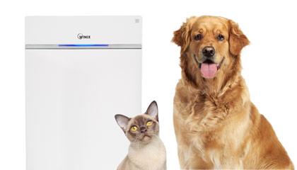 V domácnosti se zvířecími mazlíčky čistíte vzduch kvalitní čističkou vzduchu
