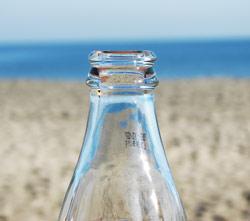 Vosy rády navštěvují lahve se sladkým pitím